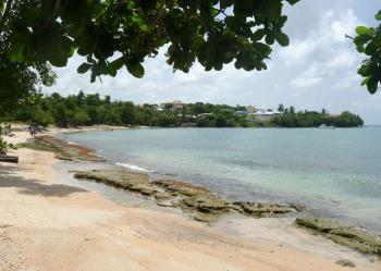 Anse-Mabouya3-www.antillesexception.com
