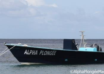 ALPHA PLONGEE MARTINIQUE