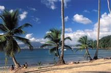 Plage-de-l-Anse-a-l-Ane1-www.antillesexception.com