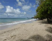 anse-fond-banane-930-www.guidemartinique.com