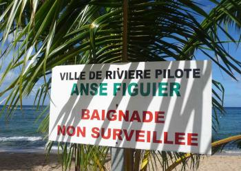 ansefiguier4-Baignade-non-surveille-www.antillesexception.com