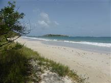 plage-grande-terre-salines-930-www.guidemartinique.com