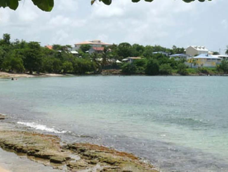 Anse-Mabouya3-www.antillesexception